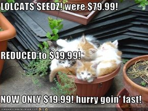 LOLCATS SEEDZ! were $79.99! REDUCED to $49.99! NOW ONLY $19.99! hurry goin' fast!