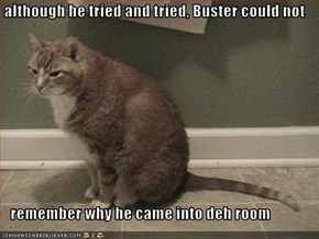 although he tried and tried, Buster could not     remember why he came into deh room