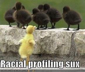 Racial profiling sux