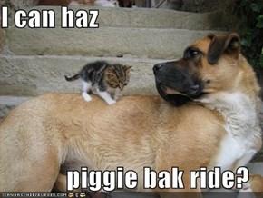 I can haz  piggie bak ride?