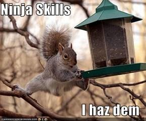 Ninja Skills  I haz dem