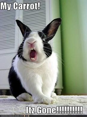 My Carrot!  Itz Gone!!!!!!!!!!