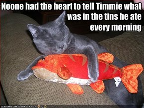 Noone had the heart to tell Timmie what
