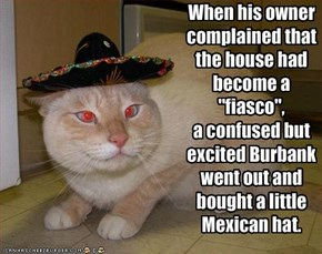 When his owner