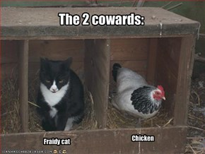 The 2 cowards:
