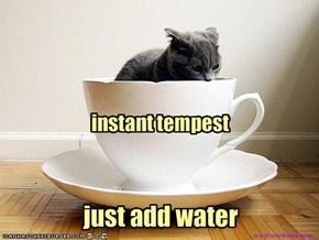 instant tempest