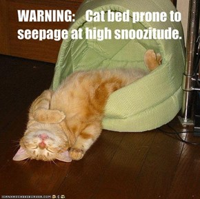 WARNING:    Cat bed prone to seepage at high snoozitude.