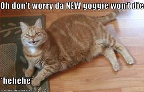Oh don't worry da NEW goggie won't die  *hehehe*