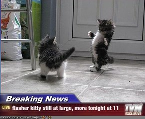 Breaking News - flasher kitty still at large, more tonight at 11