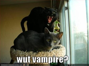 wut vampire?