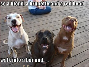 so a blond, a brunette and a red head  walk into a bar and.....