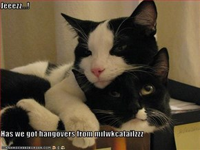 Jeeezz...!  Has we got hangovers from milwkcatailzzz