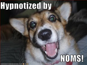 Hypnotized by  NOMS!