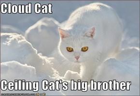 Cloud Cat  Ceiling Cat's big brother