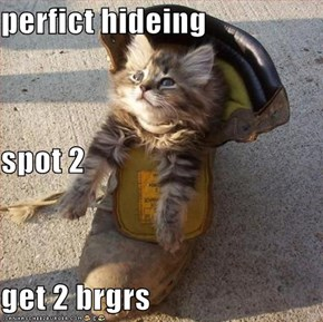 perfict hideing spot 2 get 2 brgrs