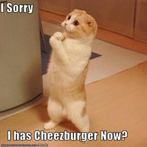 I Sorry     I has Cheezburger Now?