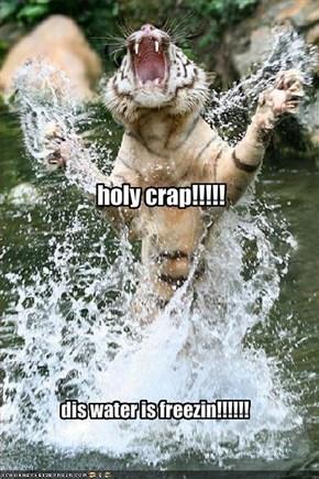 holy crap!!!!!