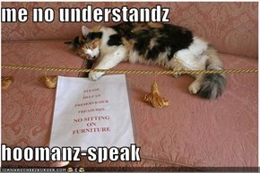 me no understandz   hoomanz-speak
