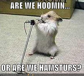 ARE WE HOOMIN...    OR ARE WE HAMSTURS?