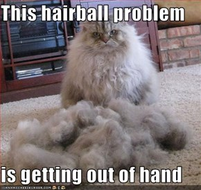 This hairball problem  is getting out of hand