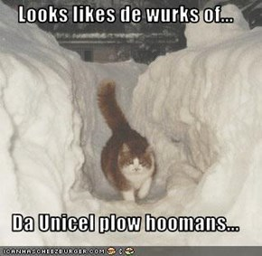 Looks likes de wurks of...  Da Unicel plow hoomans...