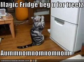 Magic Fridge beg u for treetz  Aummnomnomnomnom