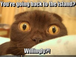 You're going back to the island?  Willingly?!