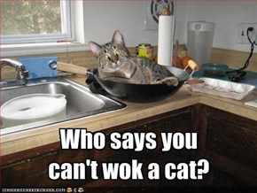 Who says youcan't wok a cat?