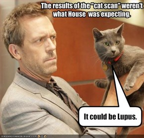 It could be Lupus.