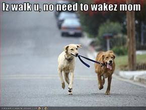 Iz walk u, no need to wakez mom