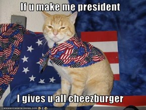 If u make me president  I gives u all cheezburger