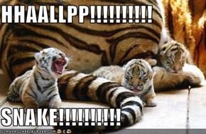 HHAALLPP!!!!!!!!!!  SNAKE!!!!!!!!!!