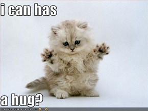 i can has   a hug?