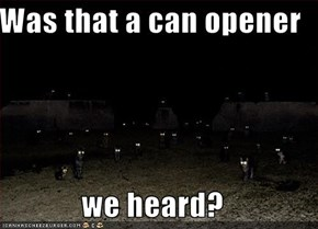 Was that a can opener  we heard?