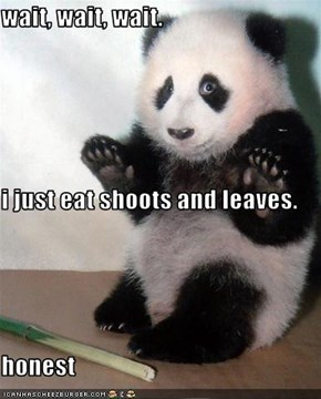 wait, wait, wait. i just eat shoots and leaves. honest