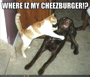 WHERE IZ MY CHEEZBURGER!?