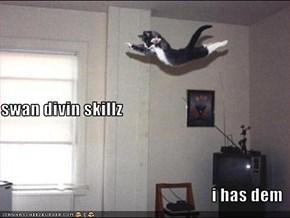 swan divin skillz i has dem