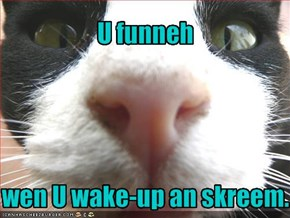 U funneh