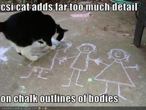 csi cat adds far too much detail  on chalk outlines of bodies