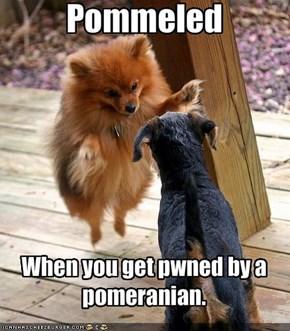Pommeled