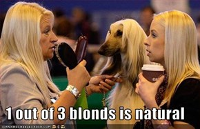 1 out of 3 blonds is natural