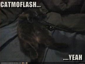 CATMOFLASH...  ....YEAH