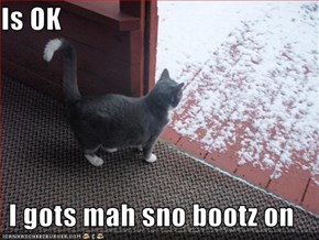 Is OK  I gots mah sno bootz on