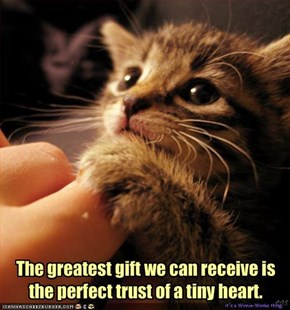 The greatest gift we can receive is the perfect trust of a tiny heart.