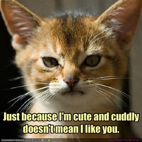 Just because I'm cute and cuddly doesn't mean I like you.