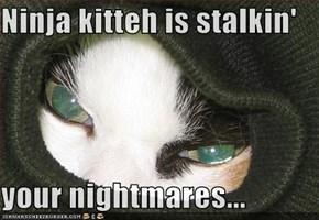 Ninja kitteh is stalkin'  your nightmares...