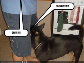 Shorts!!!!!!!!