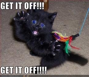 GET IT OFF!!!  GET IT OFF!!!!