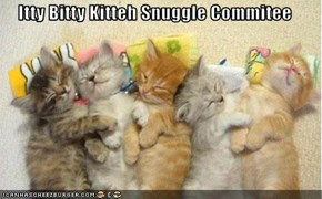 Itty Bitty Kitteh Snuggle Commitee