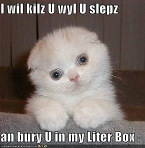 I wil kilz U wyl U slepz  an bury U in my Liter Box